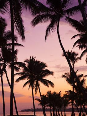 Dominican Republic, Samana Peninsula, Las Terrenas, Playa Las Terrenas Beach by Walter Bibikow