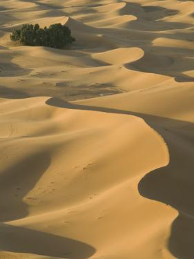 Erg Chebbi Dunes, Merzouga, Tafilalt, Morocco by Walter Bibikow