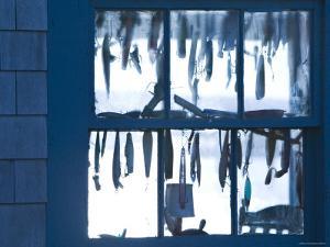Fish Shack Window, Menemsha, Martha's Vineyard, Massachusetts, USA by Walter Bibikow