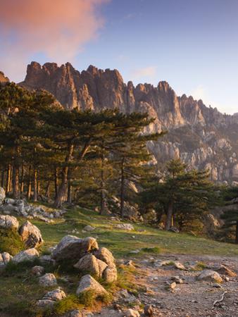 France, Corsica, Corse-Du-Sud Department, La Alta Rocca Region, Col De Bavella Pass, Aiguilles De B by Walter Bibikow