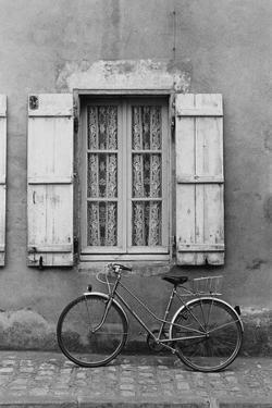 France, Poitou Charentes Bike Marans by Walter Bibikow