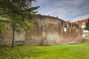 Germany, Speyer, Judenhof, Jewish Courtyard, Ancient Synagogue Wall by Walter Bibikow