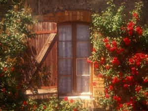 House with Summer Roses in Bloom, Vaucluse, France by Walter Bibikow