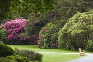 Ireland, County Kerry, Ring of Kerry, gardens in springtime by Walter Bibikow