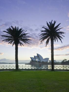 New South Wales, Sydney, Sydney Opera House Through Palms, Australia by Walter Bibikow