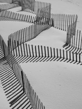 New York, Long Island, the Hamptons, Westhampton Beach, Beach Erosion Fence, USA by Walter Bibikow