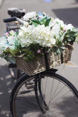 New Zealand, North Island, Martinborough. Bicycle with flowers by Walter Bibikow