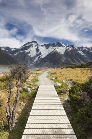 New Zealand, South Island, Canterbury, Trail through Aoraki-Mt. Cook National Park by Walter Bibikow