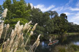 New Zealand, South Island, Christchurch, punting on the Avon River by Walter Bibikow