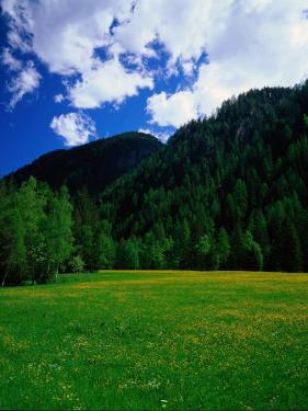 Otztal-Otz Valley, Tyrol, Austria by Walter Bibikow