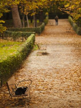 Parque Del Buen Retiro, Madrid, Spain by Walter Bibikow