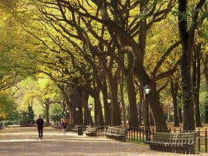 People Walking Through Central Park in Autumn, NYC by Walter Bibikow