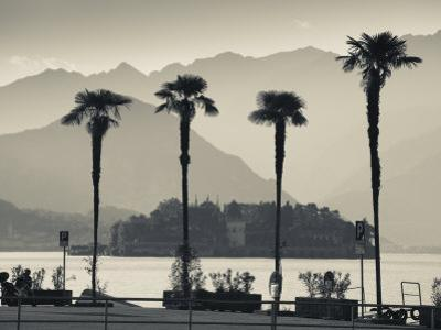 Piedmont, Lake Maggiore, Borromean Islands, Stresa, Lakefront Palms with Isola Bella, Italy by Walter Bibikow