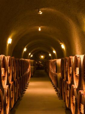 Pine Ridge Winery Cask Room, Yountville, Napa Valley, California by Walter Bibikow