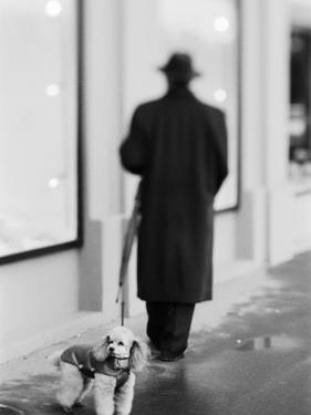 Poodle with Man, Lucerne, Switzerland by Walter Bibikow