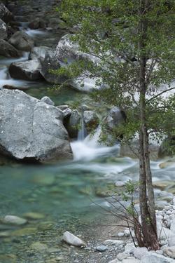 Restonica River, Gorges De La Restonica, Corte, Corsica, France by Walter Bibikow