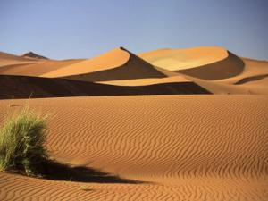 Sand Dunes in Namib Desert, Namibia by Walter Bibikow