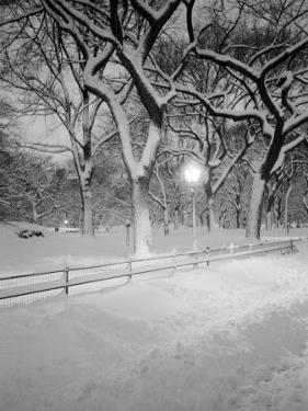 Snow Covered Promenade, Central Park by Walter Bibikow