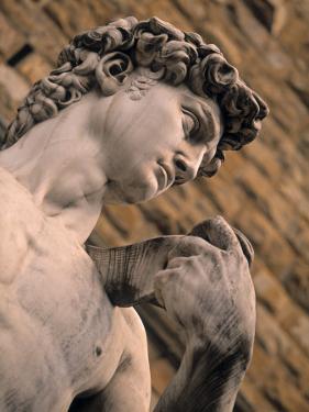 Statue of David, Piazza Della Signoria, Florence, Tuscany, Italy by Walter Bibikow