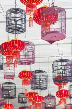 Thailand, Bangkok. Siam Square, display of red lanterns and birdcages. by Walter Bibikow