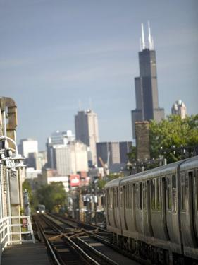 Train and City View from Wicker Park, Chicago, IL by Walter Bibikow