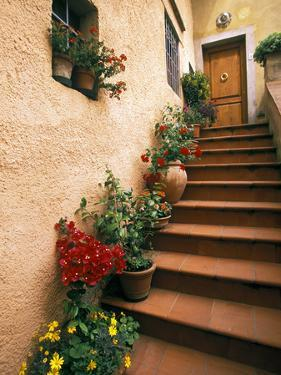 Tuscan Staircase, Italy by Walter Bibikow