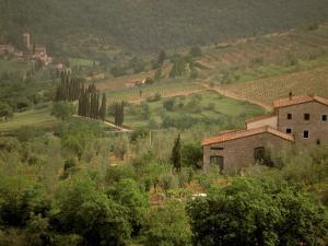 Tuscan Villa View, Radda in Chianti, II Chianti, Tuscany, Italy by Walter Bibikow