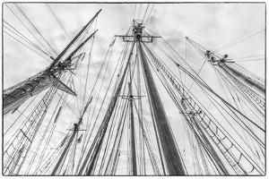 USA, Massachusetts, Cape Ann, Gloucester. Gloucester Schooner Festival, schooner masts. by Walter Bibikow