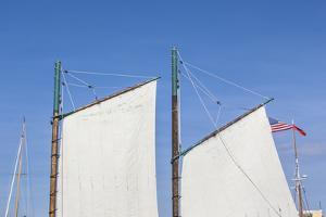 USA, Massachusetts, Cape Ann, Gloucester. Gloucester Schooner Festival, schooner sails. by Walter Bibikow