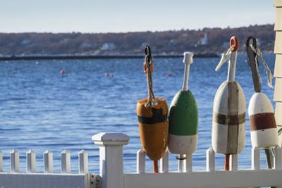 USA, Massachusetts, Cape Ann, Gloucester, lobster buoys by Walter Bibikow