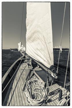 USA, Massachusetts, Cape Ann, Gloucester, schooner sails by Walter Bibikow