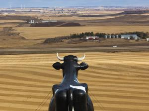 USA, North Dakota, New Salem, Salem Sue, World's Largest Holstein Cow by Walter Bibikow