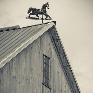 USA, Pennsylvania, Dutch Country, Amish Barn and Weathervane by Walter Bibikow