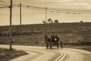 USA, Pennsylvania, Dutch Country, Paradise, Amish Horse and Buggy by Walter Bibikow