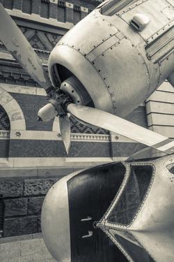 USA, Pennsylvania, Philadelphia, Grumman Greenhouse Sculpture by Walter Bibikow