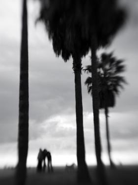Venice Beach, Venice, Los Angeles, California, USA by Walter Bibikow