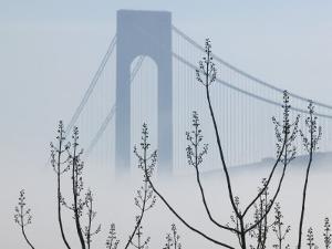 Verrazano-Narrows Bridge in Morning Fog, Staten Island, New York, USA by Walter Bibikow