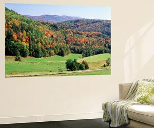 View of Peacham Hills in Autumn, Northeast Kingdom, Vermont, USA by Walter Bibikow