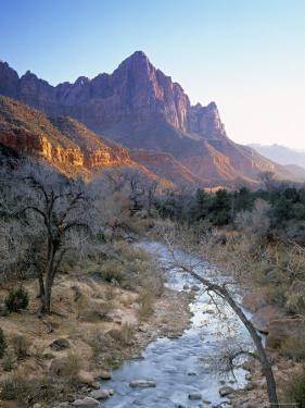 Virgin River, Zion National Park, Utah, USA by Walter Bibikow