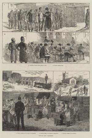 Convict Life, Dartmoor