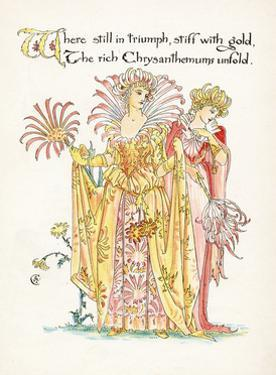 Plants, Chrysanthemum by Walter Crane