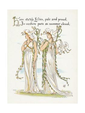 Plants, Lilium Species by Walter Crane