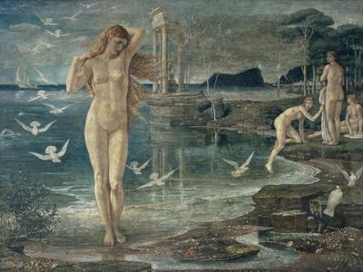 The Renaissance of Venus