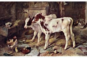 The Dog in the Manger, 1885 by Walter Hunt