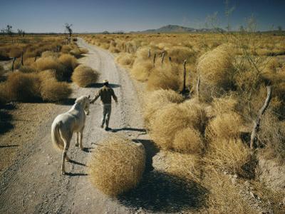 A Man Leads a Horse Down a Dirt Road