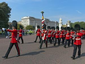 Grenadier Guards March to Wellington Barracks after Changing the Guard Ceremony, London, England by Walter Rawlings