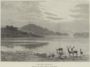 Deer Island, Loch Lomond, Picture in the Dudley Gallery by Walter Severn