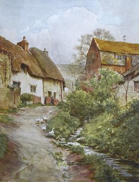 Wessex, Sutton Poyntz by Walter Tyndale