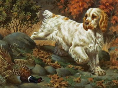 Portrait of a Clumber Spaniel Hunting a Bird by Walter Weber