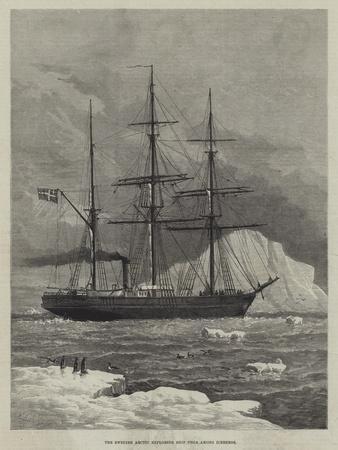 The Swedish Arctic Exploring Ship Vega Among Icebergs